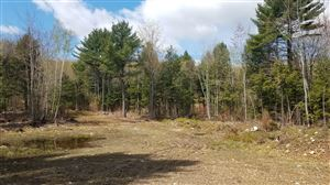 Photo of 0 Gilbert Drive, Manchester, ME 04351 (MLS # 1404758)