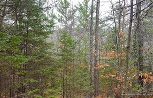 Photo of Lot 6 Rocky Lane, Greenwood, ME 04255 (MLS # 1438782)