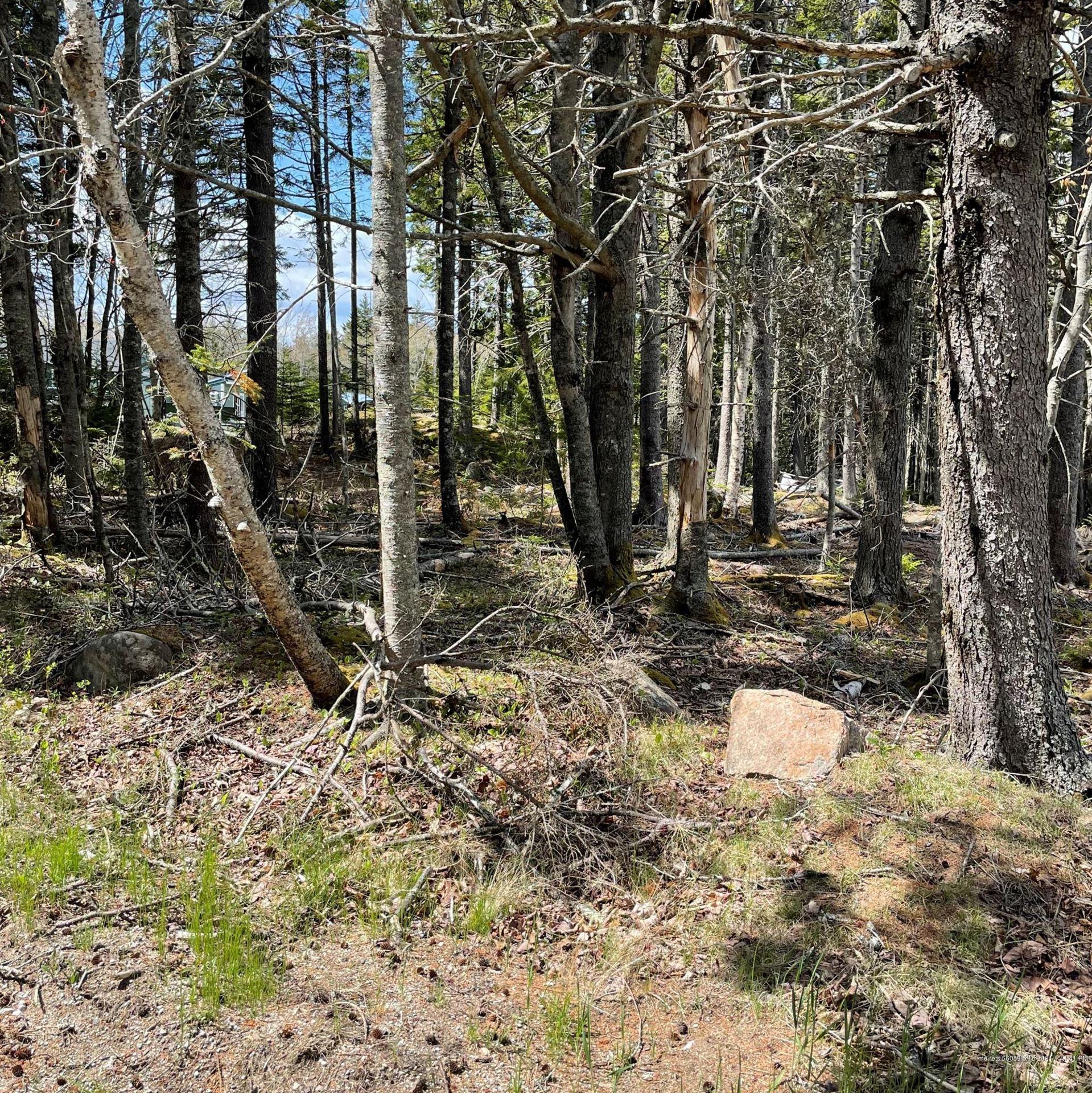 Photo of 38 East Side Road, Deer Isle, ME 04627 (MLS # 1491783)