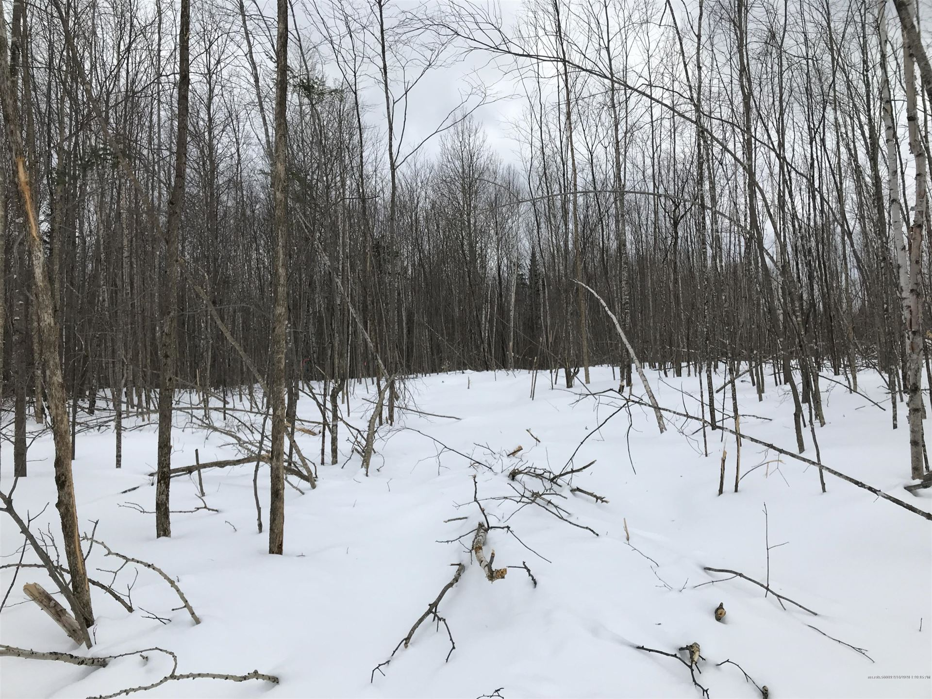 Photo of Lot 29 Ackley Pond Road, Mount Chase, ME 04765 (MLS # 1444804)