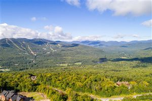 Photo of Lot 26 Mount Will Drive, Newry, ME 04261 (MLS # 1424833)