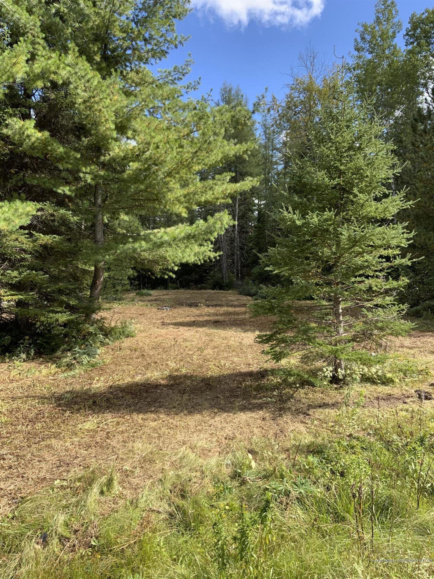 Photo of 839 New Sweden Road, New Sweden, ME 04762 (MLS # 1472883)