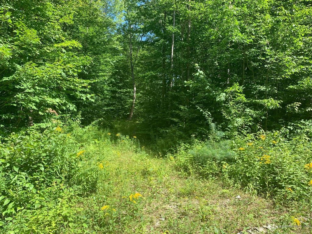 Photo of Lot 42 Forrest Road, Greenwood, ME 04255 (MLS # 1429890)