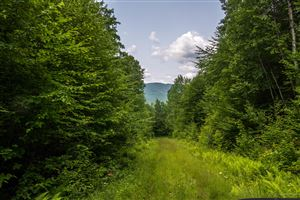 Photo of Lot 1 Bear River Road, Newry, ME 04261 (MLS # 1425898)