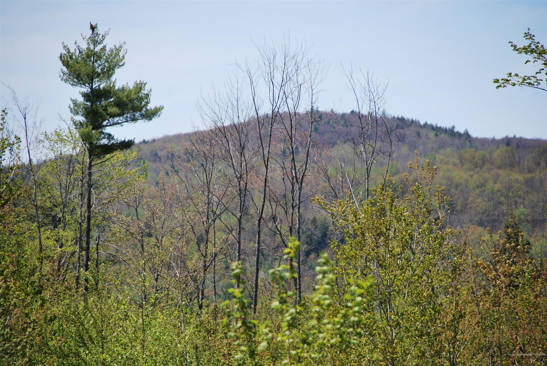 Photo of M:R09L:009 Waters Hill Road, Livermore, ME 04284 (MLS # 1452909)