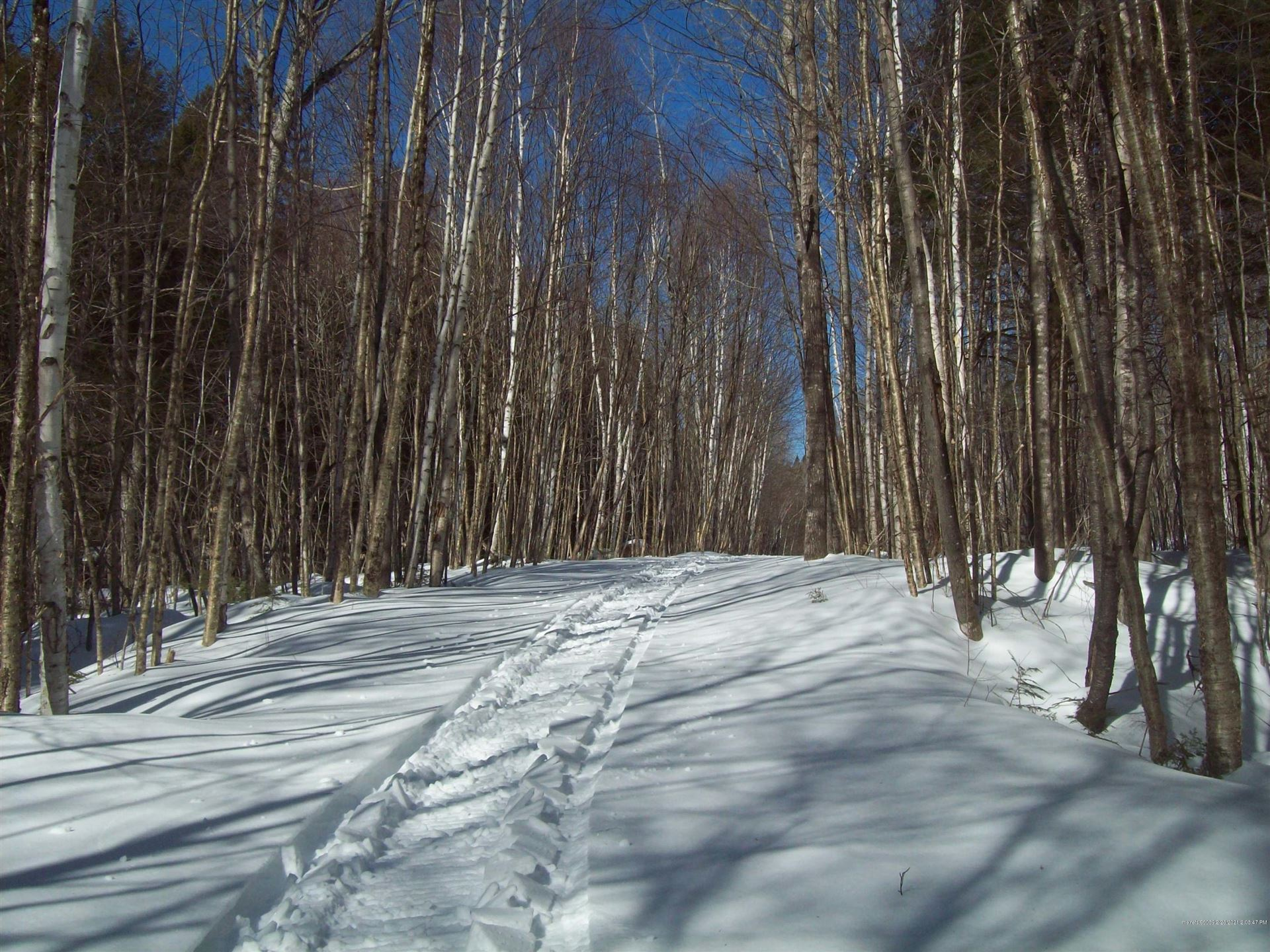 Photo of tbd Upper Pug Lake Road, Lakeville, ME 04487 (MLS # 1482912)