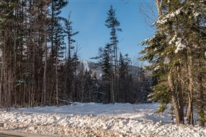 Photo of 0 Sunday River RD, Newry, ME 04261 (MLS # 1222914)