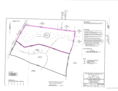 Photo of Lot 8-1 Gile Road, Newfield, ME 04095 (MLS # 1448976)