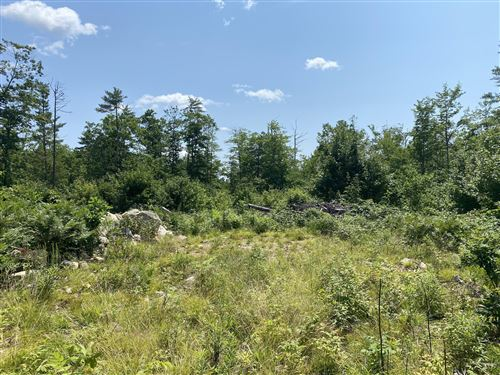 Photo of Map 2 Lot 32 Libby Road, Casco, ME 04015 (MLS # 1501986)