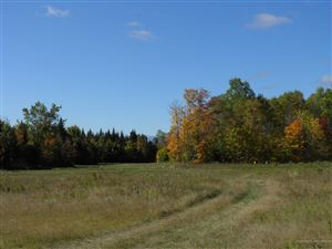 Photo of Lot 1a Shin Pond Road, Mount Chase, ME 04765 (MLS # 1435990)