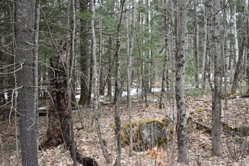 Photo of TBD Map 2 Lot 45-5 Lowell Road, Enfield, ME 04493 (MLS # 1448990)