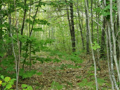 Photo of Lot 29 Summit Drive, Canton, ME 04221 (MLS # 1465992)