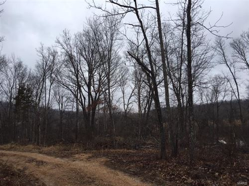 Photo of 0 Lost 40 Lane, Perryville, MO 63775 (MLS # 18018066)