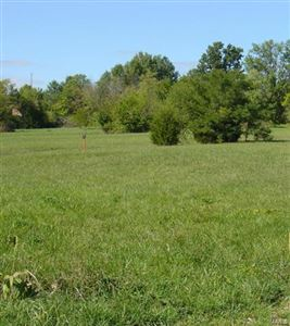 Photo of 153 Highway J, Troy, MO 63379 (MLS # 18014091)