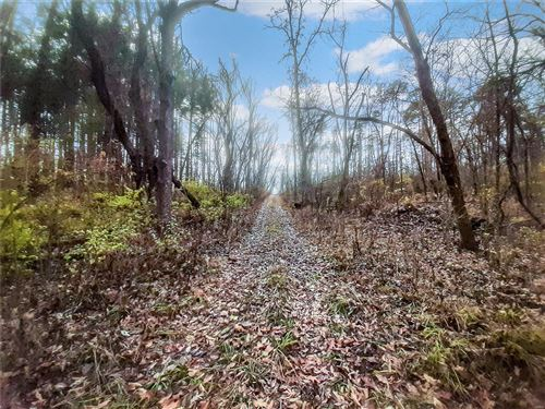 Photo of 0 21.23+/- Acres Cuivre Ford Road, Troy, MO 63379 (MLS # 21007092)