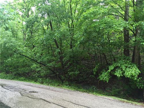 Photo of 17473 Thunder Valley Drive #36, Wildwood, MO 63025 (MLS # 21030099)
