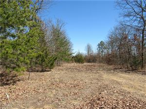 Photo of 0 North Roanoak, Cherryville, MO 65446 (MLS # 19020123)