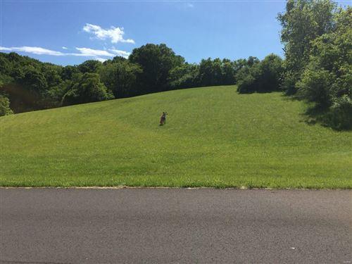 Photo of 18482 Hencken Valley Estates Drive, Wildwood, MO 63069 (MLS # 21024145)
