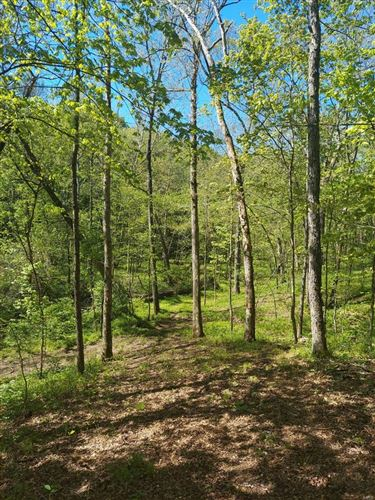Photo of 0 Lot 7 Starview Acres #7, Troy, MO 63379 (MLS # 21022172)