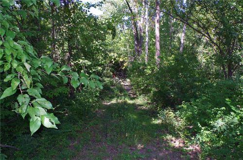Photo of 503 Kelly, Louisiana, MO 63353 (MLS # 18074182)