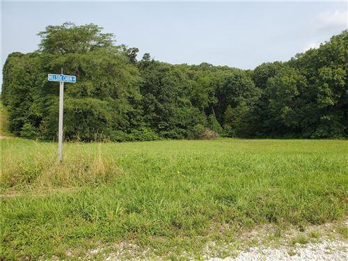 Photo of 321 Hillside Cabin Lane #18, Wright City, MO 63390 (MLS # 21050204)
