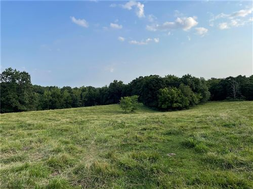 Photo of 0 Hwy PP, Middletown, MO 63359 (MLS # 21043311)
