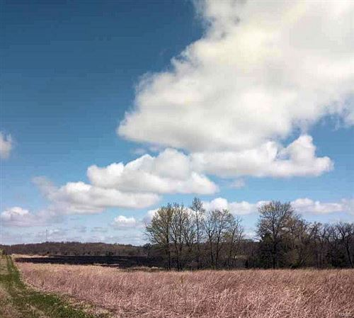 Photo of 1 Hwy CC, Center, MO 63401 (MLS # 21024334)