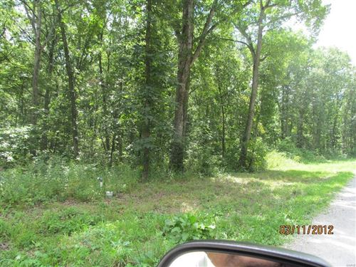 Photo of 10 Big Tom Court #6, Hawk Point, MO 63349 (MLS # 15014385)