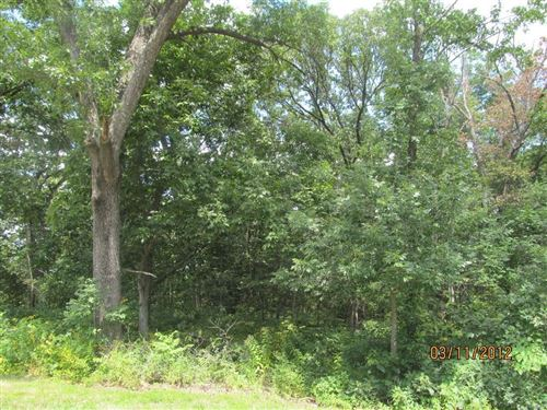 Photo of 15 Turkey Run Drive #13, Hawk Point, MO 63349 (MLS # 15014393)