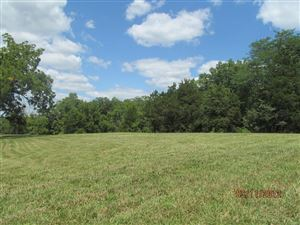 Photo of 20 Turkey Run Drive #10, Hawk Point, MO 63349 (MLS # 15014402)