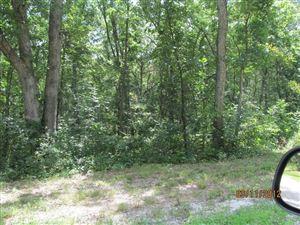 Photo of 140 Turkey Creek Crossing Drive #18, Hawk Point, MO 63349 (MLS # 15014422)