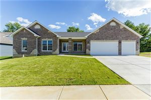 Photo of 36 Expedition Trail, St Charles, MO 63303 (MLS # 19045451)