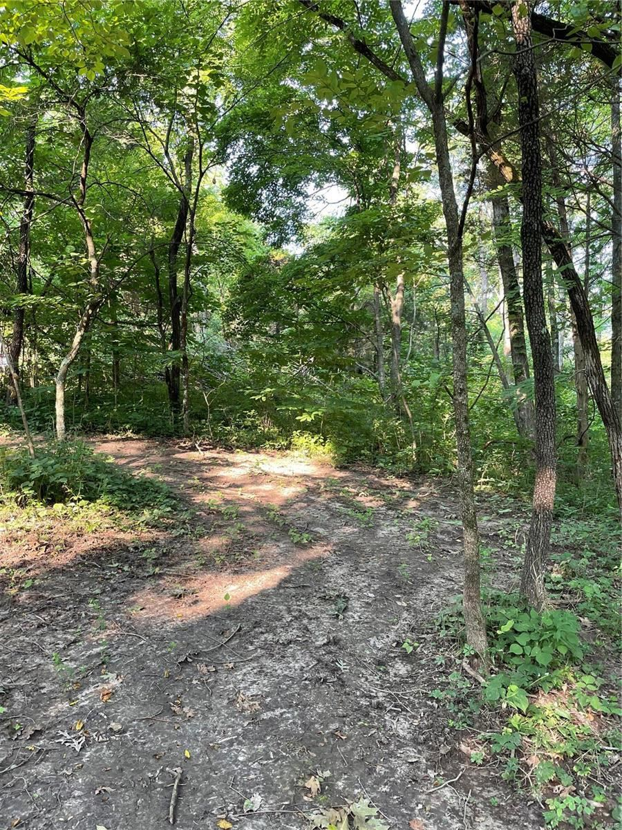 0 Terry Road, Augusta, MO 63332 - MLS#: 21040656