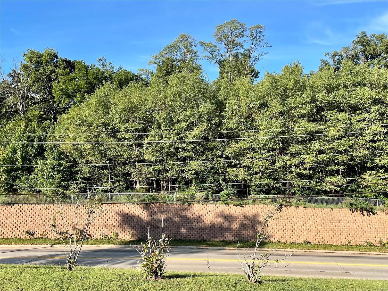Photo of 0 Perryville Road, Cape Girardeau, MO 63701 (MLS # 21067701)