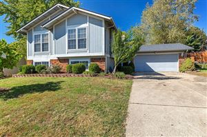 Photo of 1115 Spencer Road, St Peters, MO 63376 (MLS # 19076718)