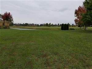 Tiny photo for 0 Spring Valley Dr #75, Okawville, IL 62271 (MLS # 19052722)