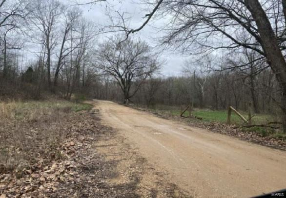 Photo of 0 Rr 2  Box 2574, Marble Hill, MO 63764 (MLS # 21067792)