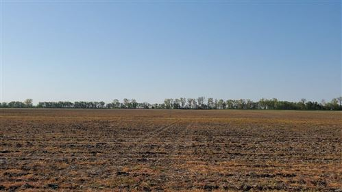 Photo of 1332 South Highway 79, Winfield, MO 63389 (MLS # 21025901)