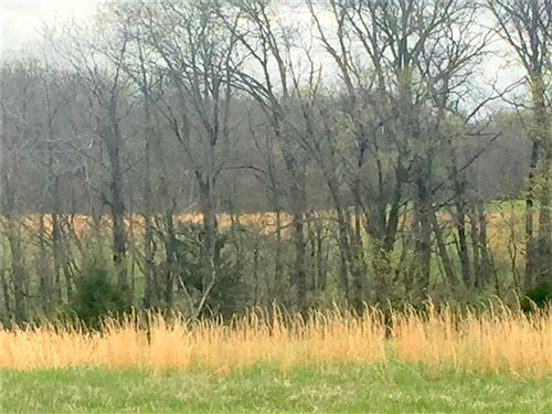 Photo of 20 Pike 49, Frankford, MO 63441 (MLS # 21050911)