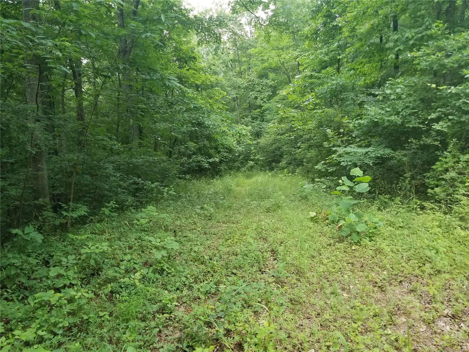 Photo of 0 County Road 500, Marble Hill, MO 63764 (MLS # 21043982)