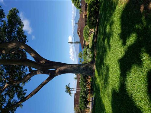 Photo of 50 PUU ANOANO St #1707, Lahaina, HI 96761 (MLS # 391062)