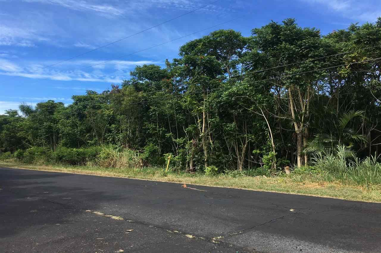 Photo of 160 Uwala Rd, Hana, HI 96713 (MLS # 389064)