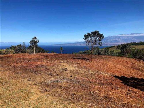 Photo of 21 Lahaole Pl, Wailuku, HI 96793 (MLS # 382066)
