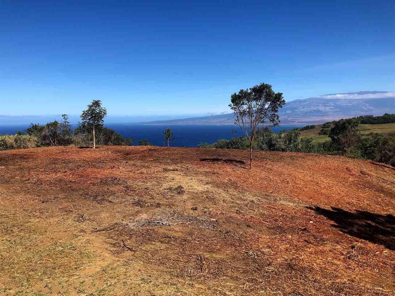 Photo of 21 Lahaole Pl #MCR 11, Wailuku, HI 96793 (MLS # 382066)