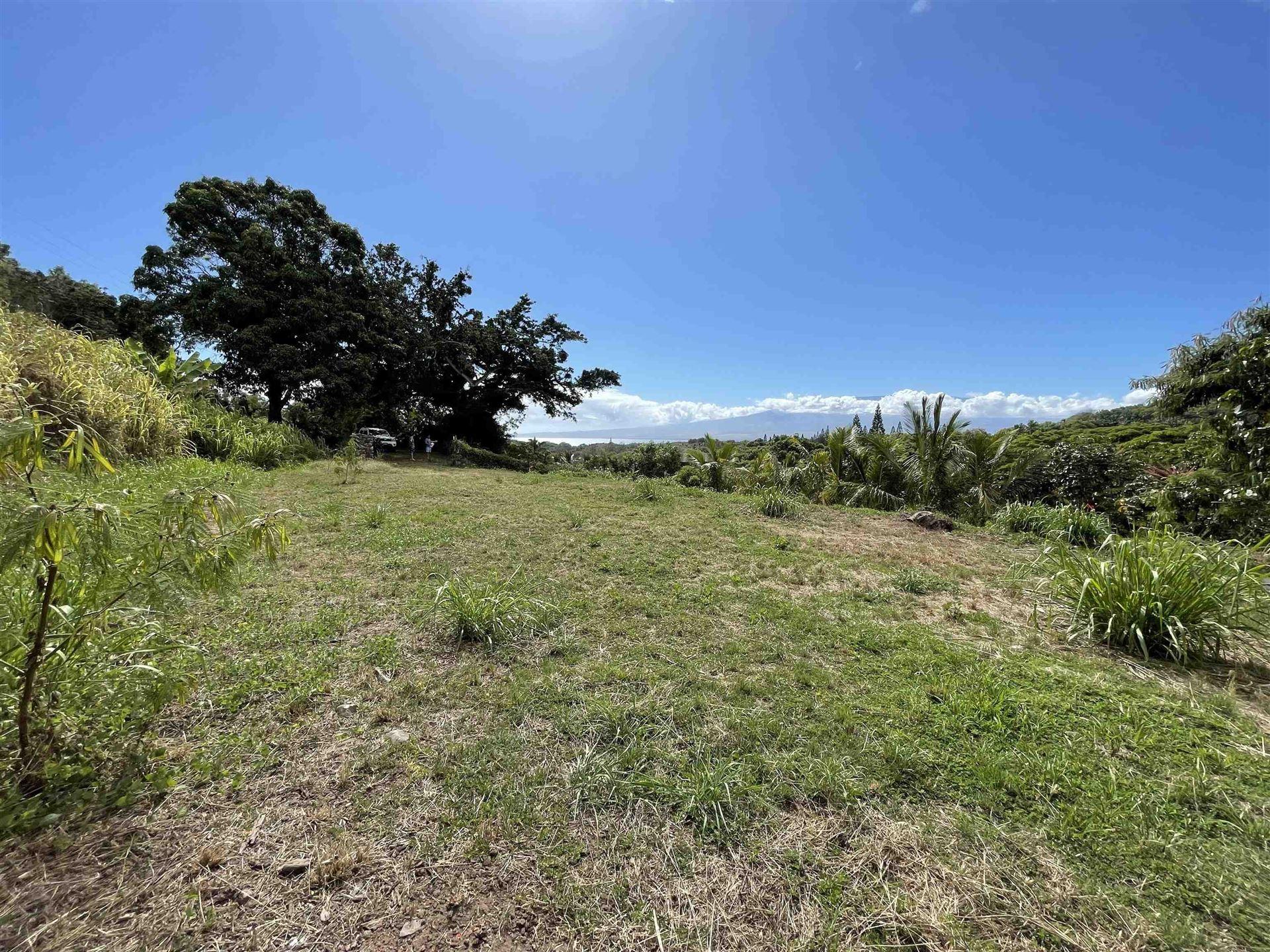 Photo of 182 River Rd, Wailuku, HI 96793 (MLS # 393089)
