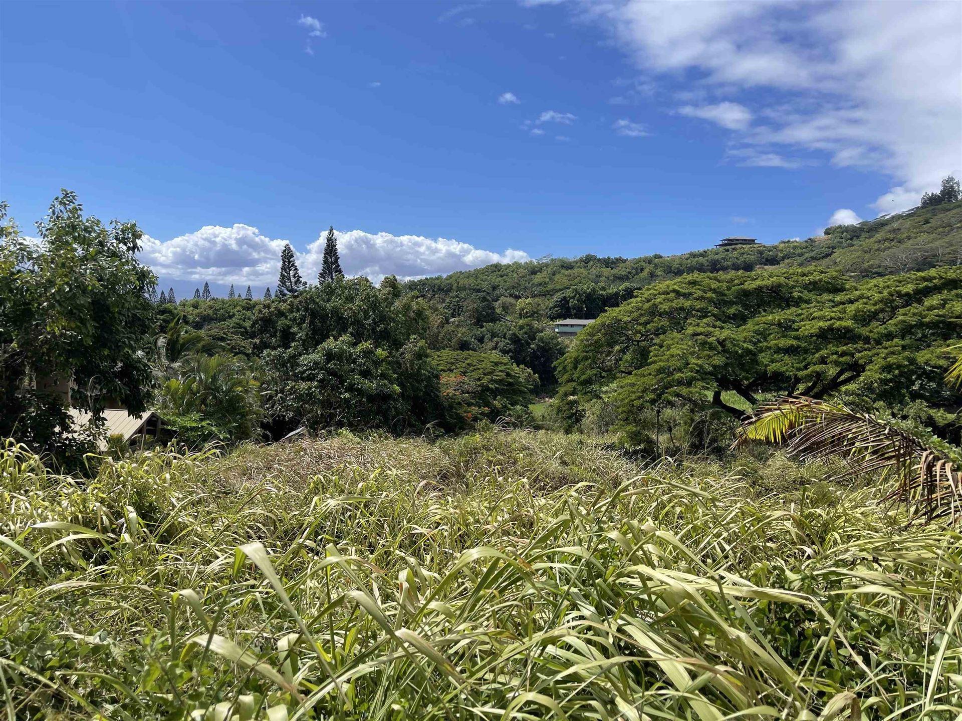 Photo of 178 River Rd, Wailuku, HI 96793 (MLS # 393090)