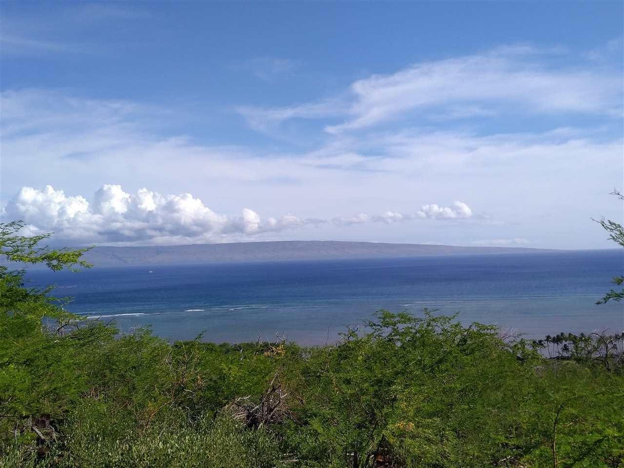 Photo of 390 Uluanui Rd, Kaunakakai, HI 96748 (MLS # 389149)