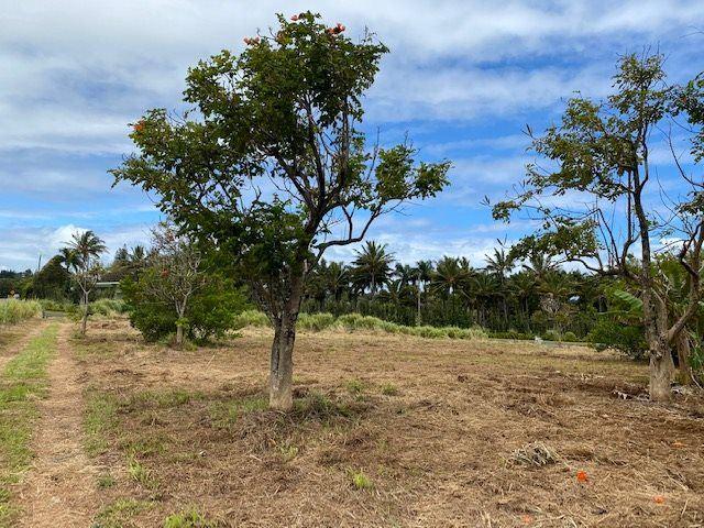 Photo of 653 Kauhikoa Rd #B, Haiku, HI 96708 (MLS # 391152)