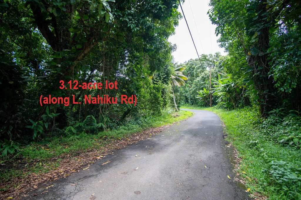 Photo of Nahiku Rd, Hana, HI 96713 (MLS # 388161)