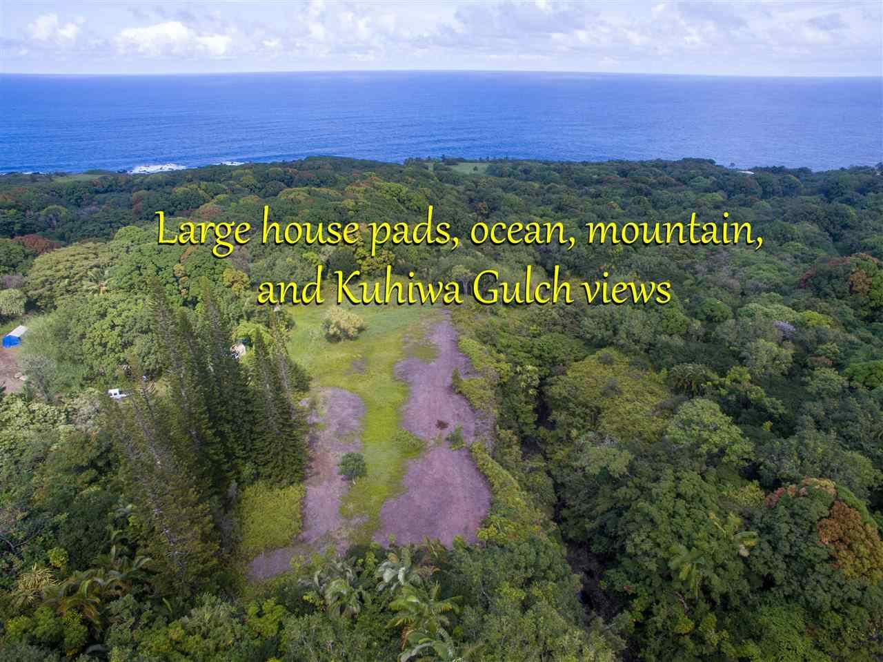Photo of 836 Nahiku Rd #29-F, Hana, HI 96713 (MLS # 389210)